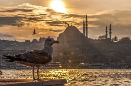 İstanbul Bu